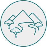 Drawing of three trees in front of mountains.